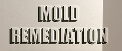 mold-clean-2